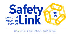 Safety Link Logo_250w